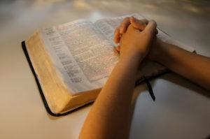 Biblehands 38202659
