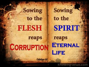 Galatians 6 8 Sowing To The Spirit Reaps Eternal Life Brown